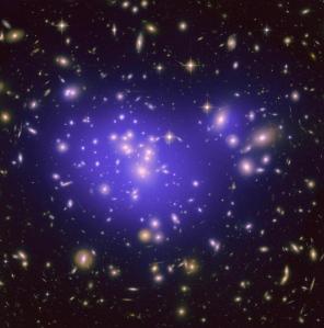 Warping Galaxies
